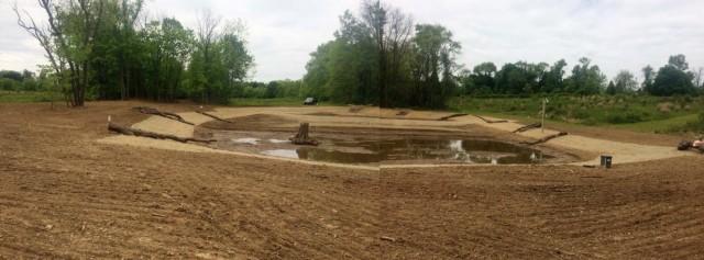 wetland pic1